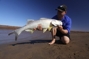 Fisherman On Beach Holding Caught Threadfin Salmon Fish