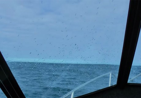 VIDEO: Understanding marine weather forecasts