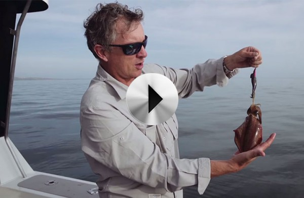 VIDEO: Fishing Journeys – Episode 2
